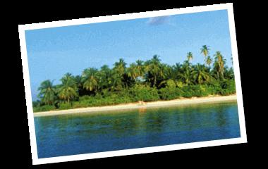 Insel Traumreise Strand und Palmen Gewinne