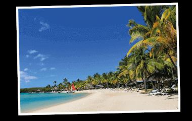 Traumreise Strand mit Palmen